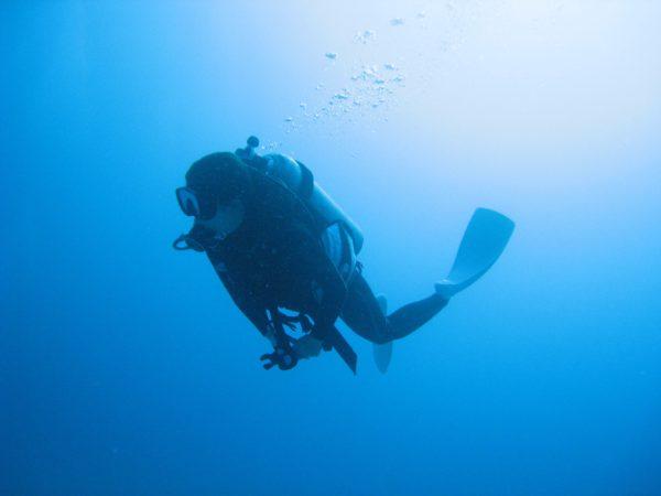 ダイビング中の姿勢について