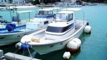 このボートでジンベイザメへ