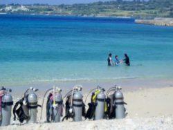 沖縄ダイビングライセンススクール