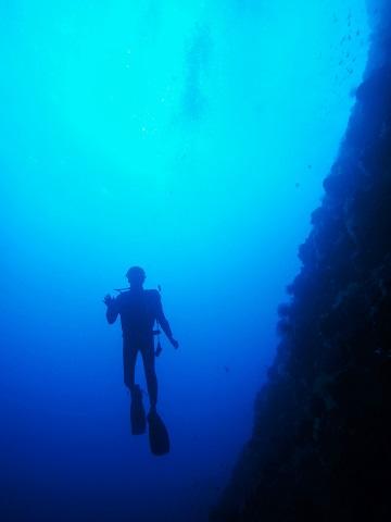 ジンベエダイビングと青の洞窟、慶良間