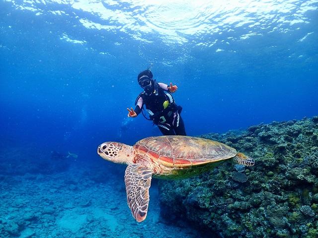 沖縄ダイビングカメ
