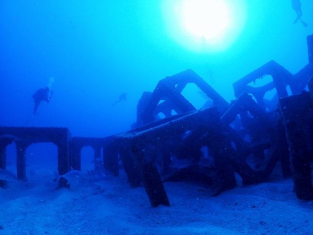 漁礁がたくさん